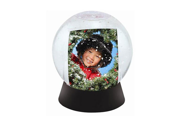 Snow-Globe - Wigon